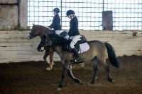 Открытый любительский турнир по конному спорту., Фото: 3