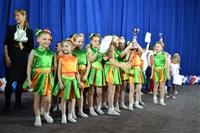 Открытый Чемпионат Тульской области по черлидингу, Фото: 51