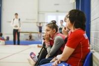 Спортивная гимнастика в Туле 3.12, Фото: 34