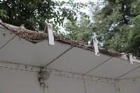 Ликвидация торговых рядов на улице Фрунзе, Фото: 20