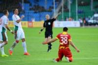 «Арсенал»- «Локомотив». Тула, 10 августа 2014 год., Фото: 20