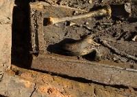 Как проходили раскопки в центре Тулы, Фото: 50