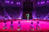 День защиты детей в тульском цирке: , Фото: 69