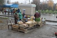 Стихийный рынок на ул. Пузакова, Фото: 13