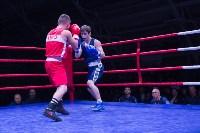 В Туле прошли финальные бои Всероссийского турнира по боксу, Фото: 22