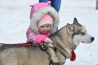 Праздник северных собак на Куликовом поле , Фото: 111