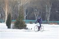 Центральный парк культуры и отдыха им. Белоусова. Декабрь 2013, Фото: 20