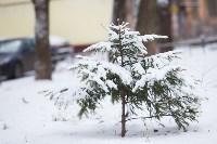 Тула после снегопада. 23.12.2014, Фото: 9