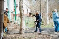 Посадка деревьев во дворе на ул. Максимовского, 23, Фото: 35