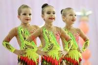 Соревнования «Первые шаги в художественной гимнастике», Фото: 62