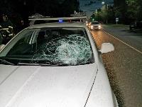 На ул. Кутузова в Туле Škoda сбила пешехода, Фото: 2
