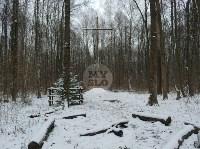 В Тульском лесу нашли загадочную поляну с крестами, елкой и зеркалами, Фото: 2
