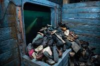 Поезд Победы, Фото: 31