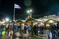 В Туле завершились новогодние гуляния, Фото: 60