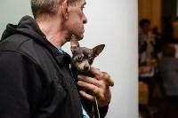 """Выставки собак в ДК """"Косогорец"""", Фото: 56"""