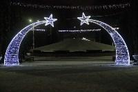 Тульские парки украсили к Новому году, Фото: 5