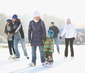 Где тулякам покататься на коньках , Фото: 4