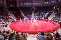 День защиты детей в тульском цирке: , Фото: 35