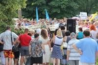 Митинг тульских предпринимателей, Фото: 21