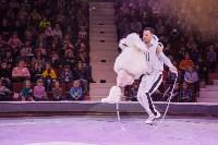 Туляков приглашают на новогоднее представление «Ёлка в цирке», Фото: 47