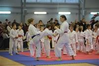 Соревнования на Кубок Тульской области по каратэ версии WKU. 29 декабря 2013, Фото: 14