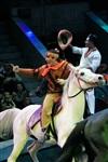 Цирк «Вива, Зорро!» в Туле , Фото: 82