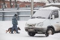 """""""Студенческий десант"""" - 2017., Фото: 12"""