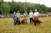 Выставка охотничьих собак под Тулой, Фото: 27