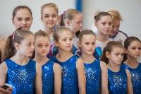Первенство ЦФО по спортивной гимнастике, Фото: 35