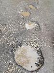 Ямы на улице Седова: «Вот такой ширины! Вот такой глубины!», Фото: 17