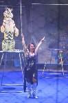 Цирковое шоу, Фото: 106