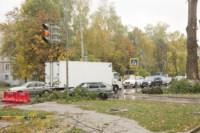 Кронирование тополей на ул. Калинина, Фото: 4
