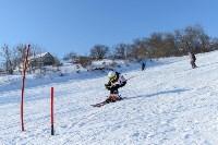 Первый этап чемпионата и первенства Тульской области по горнолыжному спорту, Фото: 17
