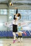 Тульские волейболистки готовятся к сезону., Фото: 39