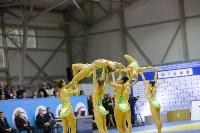 Турнир по дзюдо на призы руководителя СК РФ, Фото: 51