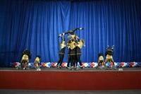 Открытый Чемпионат Тульской области по черлидингу, Фото: 30