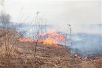 """Возгорание сухой травы напротив ТЦ """"Метро"""", 7.04.2014, Фото: 2"""