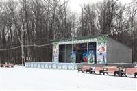 Каток в Центральном парке. Январь 2014, Фото: 5
