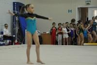 В Туле проверили ближайший резерв российской гимнастики, Фото: 5