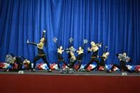 Открытый Чемпионат Тульской области по черлидингу, Фото: 31