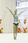 Художественная гимнастика. «Осенний вальс-2015»., Фото: 140