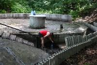 Жители Зеленстроя: Что хотят построить  в Платоновском парке?  , Фото: 7