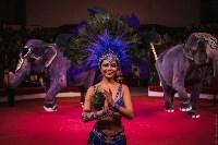 «Шоу Слонов» в Тульском цирке, Фото: 4