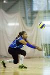 Тульские волейболистки готовятся к сезону., Фото: 37