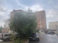 Дерево упало на авто, Фото: 3