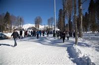Олимпиада-2014 в Сочи. Фото Светланы Колосковой, Фото: 5