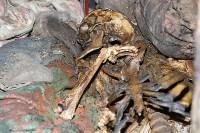 Скелет в доме на ул. К. Маркса (18+), Фото: 4