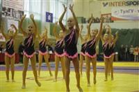 Представительный турнир по греко-римской борьбе. 16 ноября 2013, Фото: 28