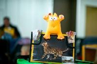 Пряничные кошки, Фото: 13