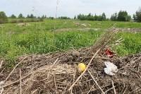 В тульском Заречье жители год добиваются ликвидации ядовитой свалки, Фото: 24